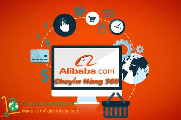 chuyenhang365 nhan mua ho hang tren alibaba voi gia goc